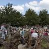 oliviersesplanade-enguirlandage