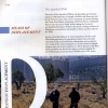 oliviers-displace-palestine-2